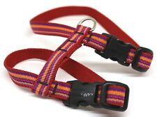 Lupine Dog Harness Size Small Multicolor