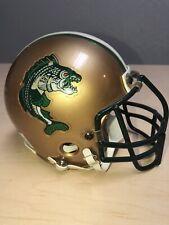 Minnesota Fight Pike Arena Football Mini Helmet