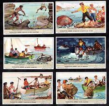 Coastal Fishing Liebig Card Set 1953 Boats Nets Diving Lobster Pots Fish Snorkel