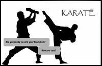 ** Kenpo Karate Black Belt Instructor DVD Training Certification Program **