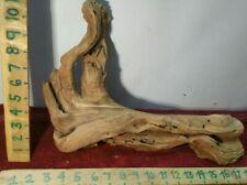 New listing Manzanita driftwood premium aquarium wood aquascape decor reptiles bird perch