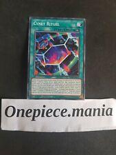 Yu-gi-oh! Cynet Rituel (Ritual - Cyberse) : MP19-FR113 -VF/Commune-