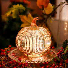 Mercury Glass Pumpkins Lights, 5.5 Inches Decorative Pumpkin Decor,