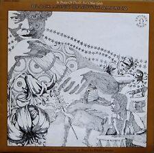 David Lewiston - Black Music of South America (Vinyl, Ex.Cond., 1970, H-72036)