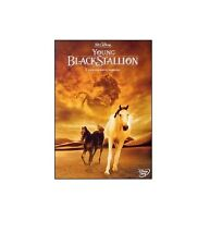DVD DISNEY  Young Black Stallion