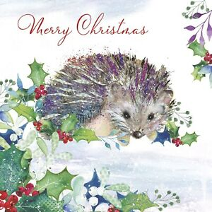 Hedgehog At Christmas Charity Christmas Cards Pack of 10 Blue Cross for Pets