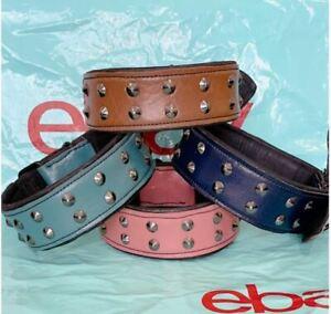 Dog Collar Genuine Leather Studded Medium Large Breeds Pet