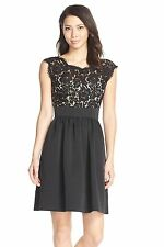 NWT $148 Eliza J Lace & Faille Cap Sleeve Dress Navy Black & Blush 10 12 14 16 P