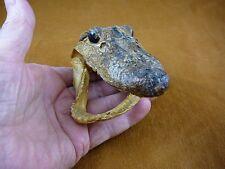 """G-Def-253) 4-1/8"""" Deformed Gator ALLIGATOR HEAD jaw teeth TAXIDERMY weird gators"""