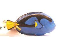 T20) PAPO 56024 Doktorfisch Fisch Fische  NEUHEIT 2015 Seetiere