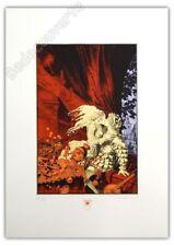 Sérigraphie LIDWINE  A.LI.EN Fest. BD Sollies 180ex signé 50x70