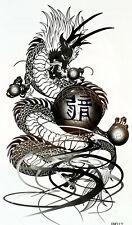 New Einmal-Tattoo Temporary Body Art Wasserdicht HM312 Neu