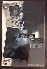 RISING STARS BORN IN FIRE Graphic Novel 2000 Image Comics - LN