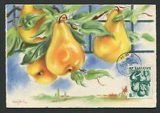 Bulgaria MK 1955 Flora FRUTTA PERE Fruits FRUIT MAXIMUM CARD MC cm c8958
