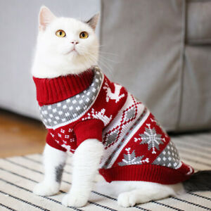 A sweater for a cat or a small dog