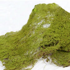 2 x WIRED MOSS MATS-30cm x 40cm-ARTIFICIAL/FAKE GREENERY-TERRARIUM/CRAFT/GARDEN