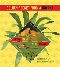 Guyana - 2016 - Golden Rocket Frog - Souvenir Sheet - MNH