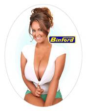 Sexy Tool Box Sticker Busty babe Sara Randall Binford Tool Time Girl Toolbox