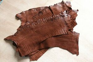 Authentic Crocodile Remnants Piece Leather Hide Craft Supply Nubuck Single One