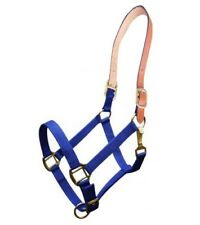 Showman BLUE Triple Ply Nylon Western Horse Halter w/ Leather Crown!! NEW TACK!!