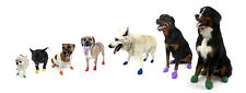 PAWZ Rubber Waterproof Dog Boots - 12 Disposable Boots XX Small Size, Black