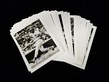 Lot of 39 Diff circa 1982-83 New York Yankees B&W Snapshot Photos w/ Mattingly