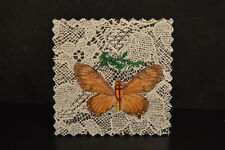 """Brown Butterfly Genuine insect Formosa sealed intact Crafts 2 1/8"""" width Nos"""