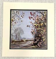 1955 Vintage Stampa British Wild Fiori Still Life Ribes Nero Autumn Bacca