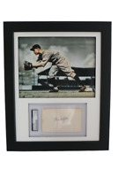 Display w/ Colorized Detroit Tigers Photo & w/ PSA 3x5 signed Flea Clifton