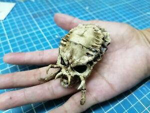 Predator Skull 1/6 scale (Clasic skull)