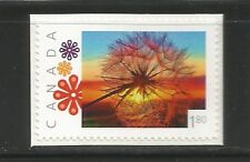 PICTURE POSTAGE  $1.80  Flowers frame   # 2592a  PERSONALIZED     MNH
