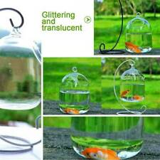 Round Shape Clear Hanging Glass Aquarium Fish Bowl Fish Tank Flower Plant Vase