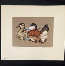 1981 Federal Duck Stamp Print, Ruddy Ducks by John Wilson, MINT in Orig. Folio