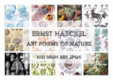 Ernst Haeckel Art Forms in Nature 100 vintage sea life, bird, animal DIGITAL