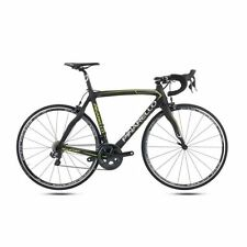 Pinarello Carbon Fibre Frame Men Road Bike-Racing Bicycles
