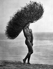 1986 HERB RITTS 16X20 Vintage Photo Gravure MALE NUDE Tumbleweed Body Gay Art