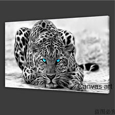 Not Framed (30x50cm) Canvas Print Home Decor Picture Painting Leopard Animal