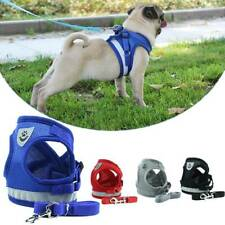 Pet Walk Leash Harness Puppy Cat Rope Chest Strap Vest for Small Medium Dog