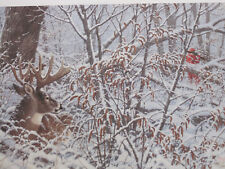"""""""HOLD TIGHT  WHITETAIL DEER """"  Print by Michael Sieve RULE 5  - Limited Edition"""