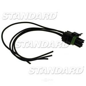 Idle Air Control Valve Connector (Fuel Injected) Standard Motor Products S555