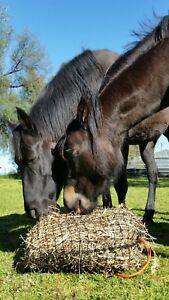 Small - GutzBusta Slow Feed Hay Net - up to 3 large biscuits of hay