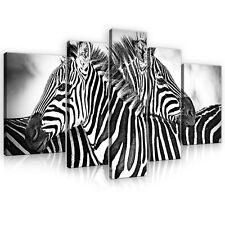 SET (5 teilig) Leinwandbild Wandbild Bild Tier Tieren Zebra Natur   3FX10159S4A