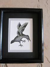 Eagle Woman Eskimo Drawing Art