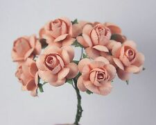 # 10 Large Peach Roses on stems by Green Tara