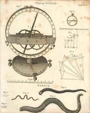 1802  Dipping Needle Newton Philosophy Nereis Rag Worm Copperplate