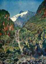 A4 Foto Johnston Sir Harry 1902 kiyanja Pico de Ruwenzori impreso Poster