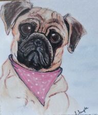 Cute Pug with pink neck scarf greeting card blank suitable for any occasion