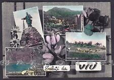 TORINO VIÙ 13 VIU' - SALUTI da... VEDUTINE CICLAMINI Cartolina FOTOGR. viag 1957