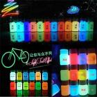 20g Glow in the Dark Pigment Craft DIY Acrylic Luminous Bright Paint Party Decor