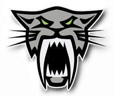 Team Arctic Cat Head Sabercat Firecat decal sticker F8